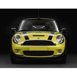 Streifen Auto-Aufkleber für ihren Mini Cooper (paar)